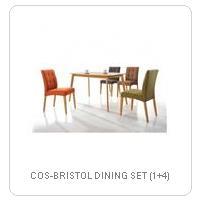 COS-BRISTOL DINING SET (1+4)